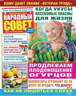 Народный совет №33 август 2021...