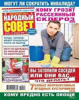 Народный совет №29 июль 2020...