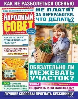 Народный совет №41 октябрь 2020...