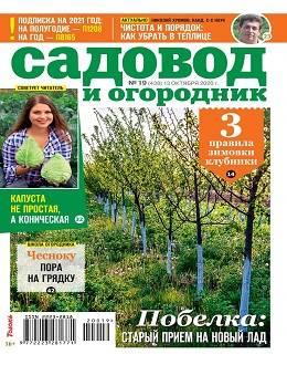 Садовод и огородник №19 октябрь 2020...