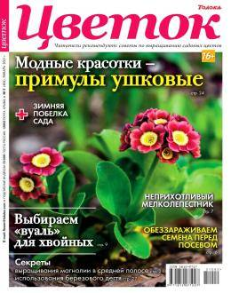 Цветок №2 февраль 2021...